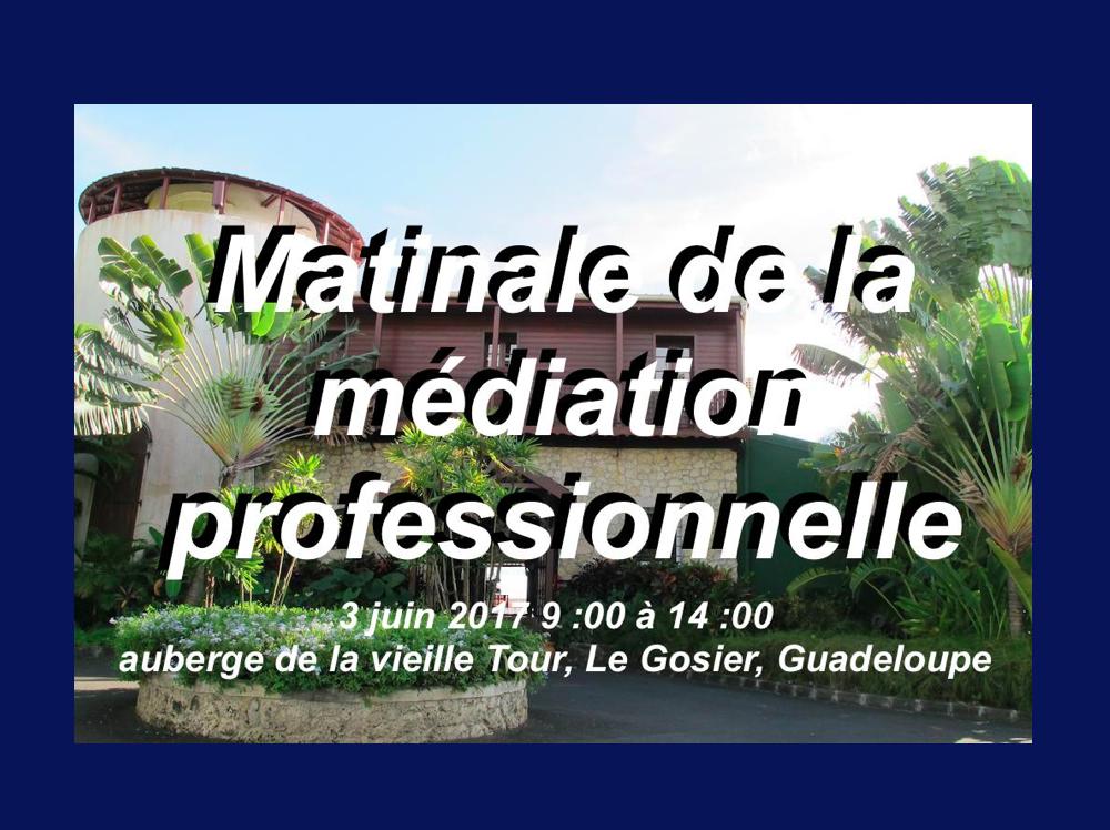 Matinale Médiation professionnelle en Guadeloupe